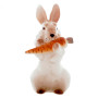 Lapin taille moyenne